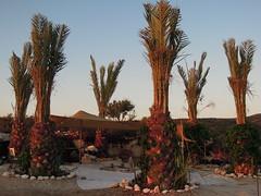 Templo cerimonial nas terras Israelensses