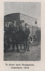 Mihai Timaru.1