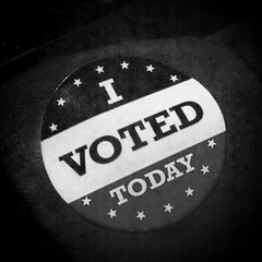 I Voted Today (But in Fitzwalkerstan It's Lost...