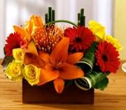 Arrangement of gerberas, lilies and roses