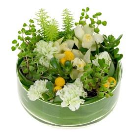 Succulent Dish Garden - Leanne and David Kesler, Floral Design Institute, Inc., in Portland, Ore.