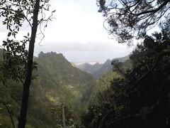 Montagnes madériennes