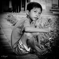 "Regards de Bali • <a style=""font-size:0.8em;"" href=""http://www.flickr.com/photos/38137995@N07/27042583036/"" target=""_blank"">View on Flickr</a>"