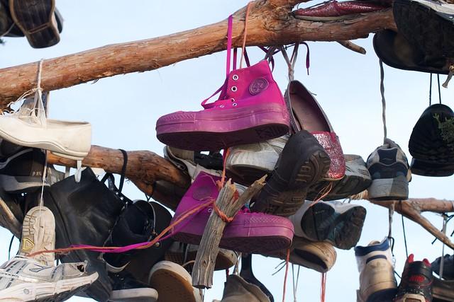 Lottsa Shoes