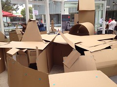 The Cardboard Box Maze