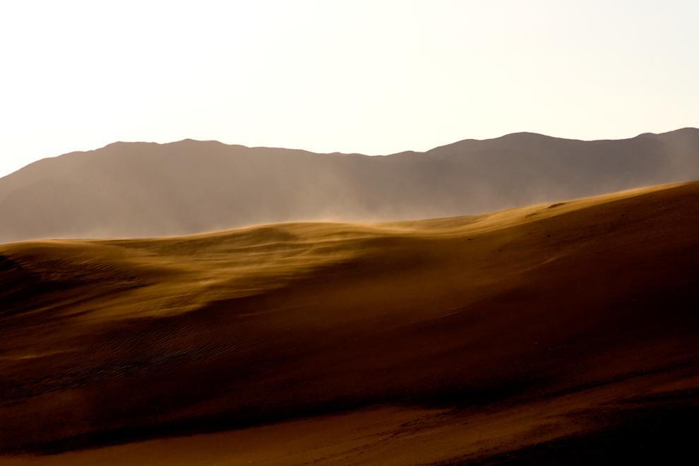 Las dunas de la región de Copiapó ya no son alimentadas de arenas frescas. Su fuente de abastecimiento se agotó, por lo que su masa arenosa representa una herencia. Sin embargo, los vientos siguen modelando su topografía, restringiéndose principalmente a mantener vivas las formas (Roberto Dam)