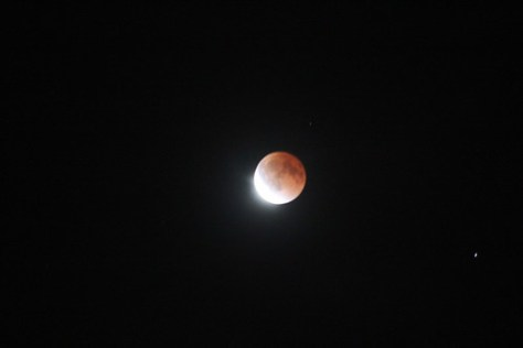 L.A. Lunar Eclipse 2014