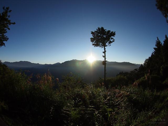 20111114: 阿里山日出