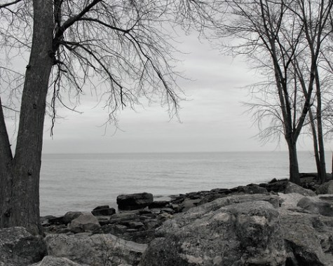 Lake Erie 220