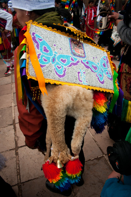 Cuzco_Traditional_Dance-23
