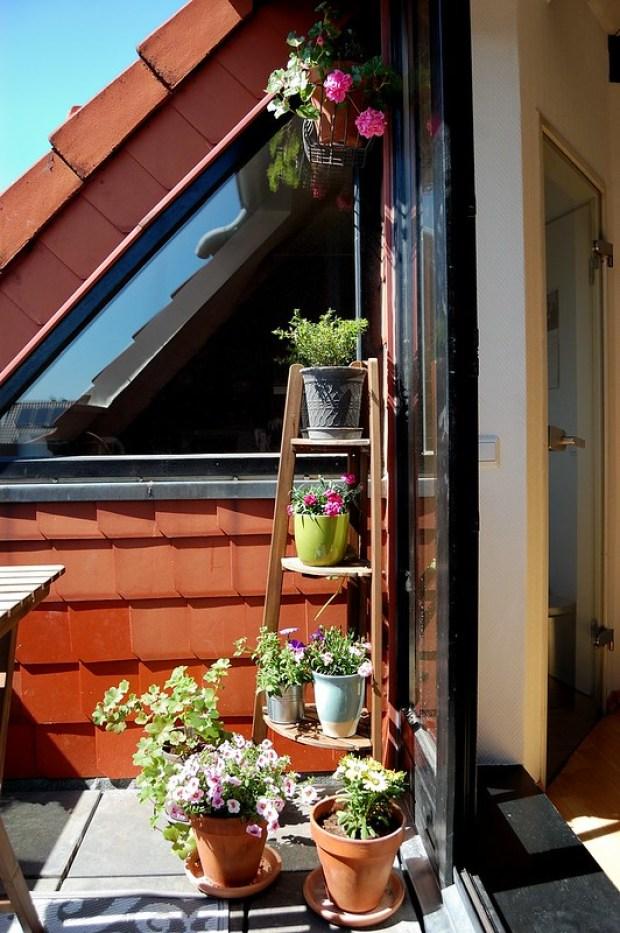 Balcony Spring 2016
