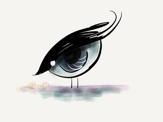birdeye doodle