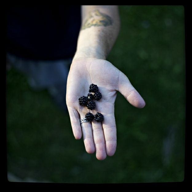 danny blackberry