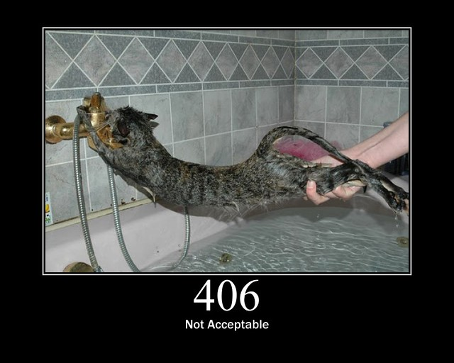 406 - Not Acceptable