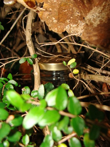 Jar No 328 in situ 01