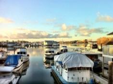 Reader C.T. | Fraser River | Vancouver, BC | 8:08am