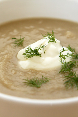 pear fennel soup