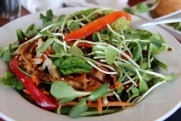 Salad, Sobo