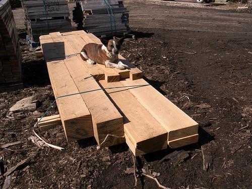 rough sawn oak timber