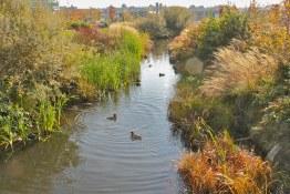 Olympic Village Waterway