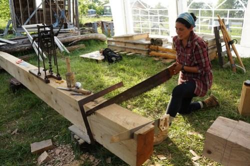 Timber framing crosscut saw