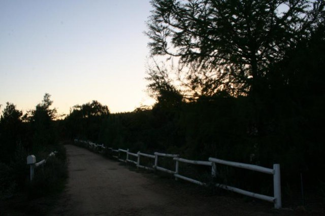 country road at dusk