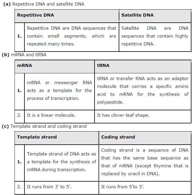 NCERT Solutions Class 12th Biology: Chapter 6   Molecular Basis of Inheritance