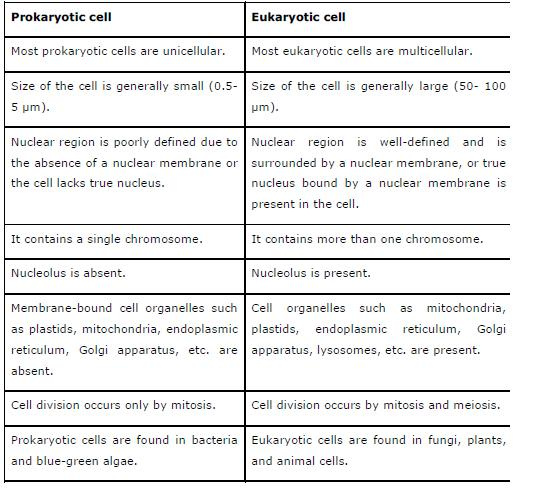 NCERT Solutions for Class 9th Science: Chapter 5 The Fundamental Unit of Life Image by AglaSem