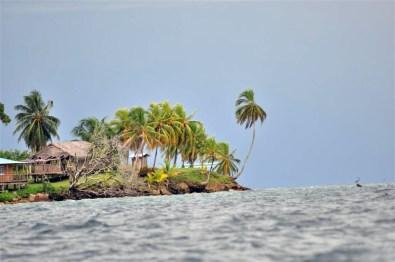 Vegetación Virgen de Isla Bastimentos
