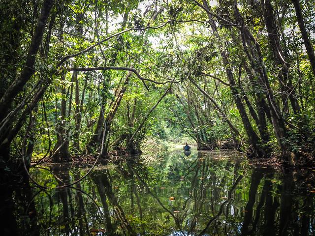Exploring Rio Dulce-8