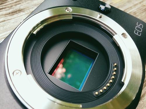 Canon EOS M: Sensor