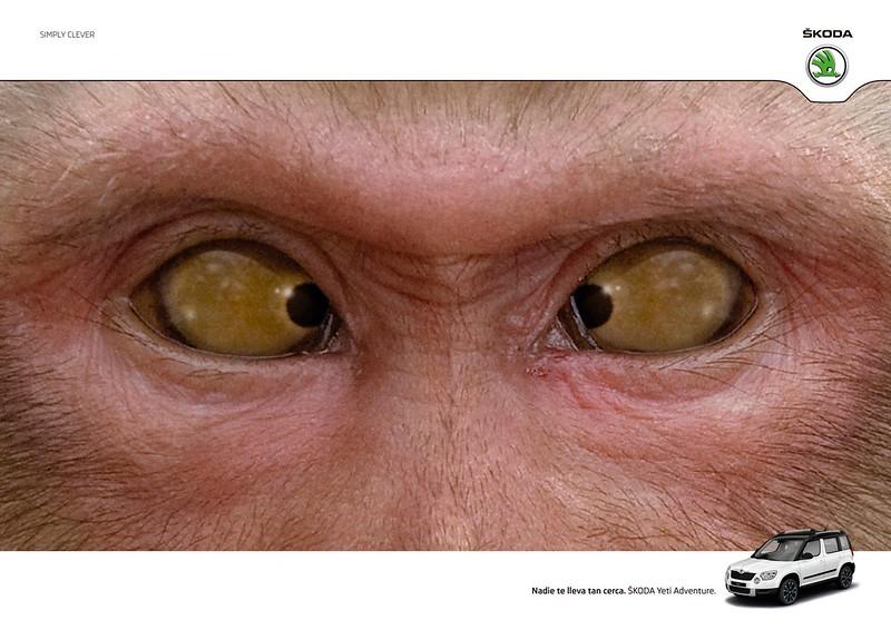 Skoda - Monkey