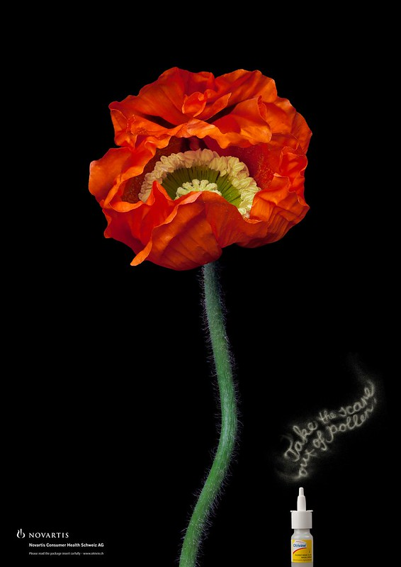 Otrivine - Flower 1
