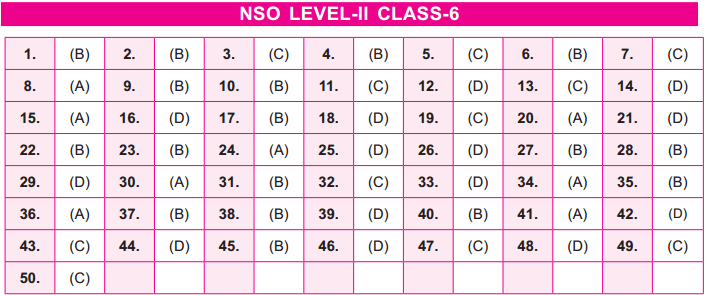 17th NSO 2014   2015 Answer Keys – Class 6