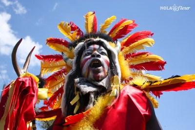 madi gras indians new orleans wild man