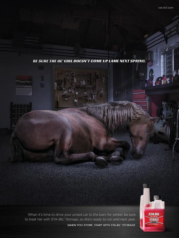 Sta-Bil Storage - Horse