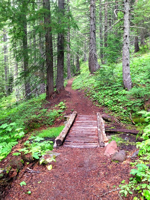 Wood Bridge, Nannie Ridge Trail, Lewis County, Washington, August 2013