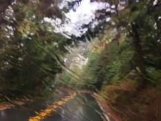Rain on the road near Morro Bay
