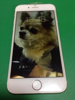 136_iPhone6のフロントパネルガラス割れ