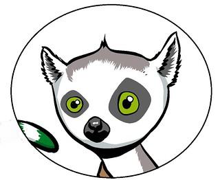 lemur face & tail