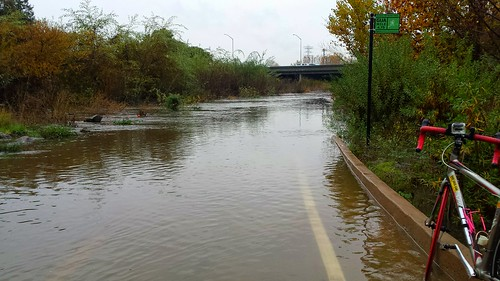 Guadalupe River Trail at Highway 101