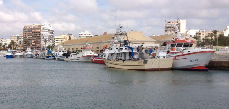 Fiskebåtar i Torreviejas hamn
