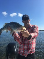 How to catch snook www.tampafishingcharters.com