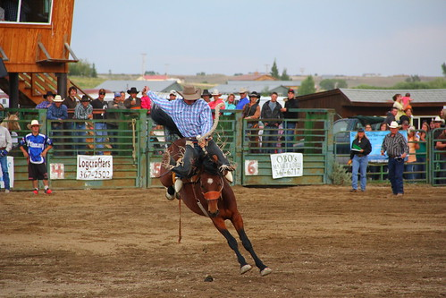 Pinedale Rodeo