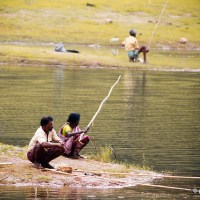Fishing At Periyar Tiger Reserve, Thekkady, Kerala