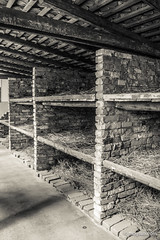 "Auschwitz • <a style=""font-size:0.8em;"" href=""http://www.flickr.com/photos/77968807@N00/8422752115/"" target=""_blank"">View on Flickr</a>"