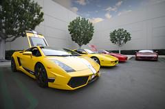 Lamborghini & Ferraris