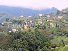Saraçlı'dan köy (4)_wm