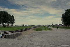 "Auschwitz • <a style=""font-size:0.8em;"" href=""http://www.flickr.com/photos/77968807@N00/8423881652/"" target=""_blank"">View on Flickr</a>"
