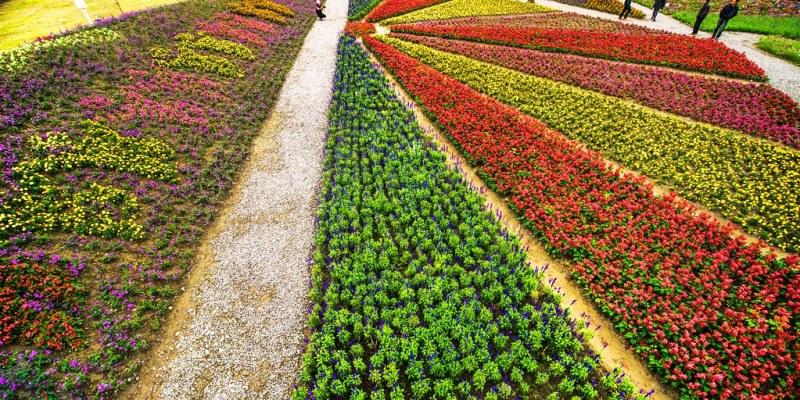【花蓮】。花東農遊趣『台灣後山花園』~花蓮12鄉鎮、台東5鄉鎮彩色花毯
